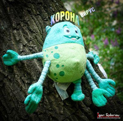 Увидел сегодня на дереве КОРОНАвируса