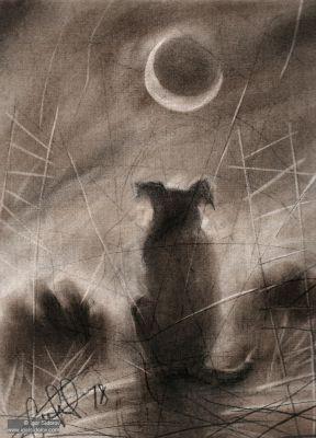 Ночь, Эхо Собаки, Грусть, Ну ипусть. Графическое искусство